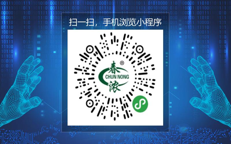 春浓日照绿茶 XC199
