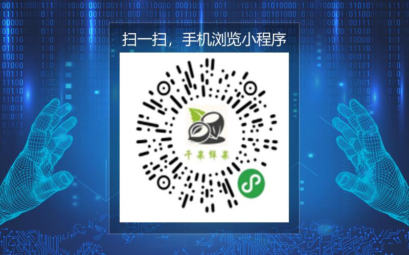 干果鲜果行业市场 XC204